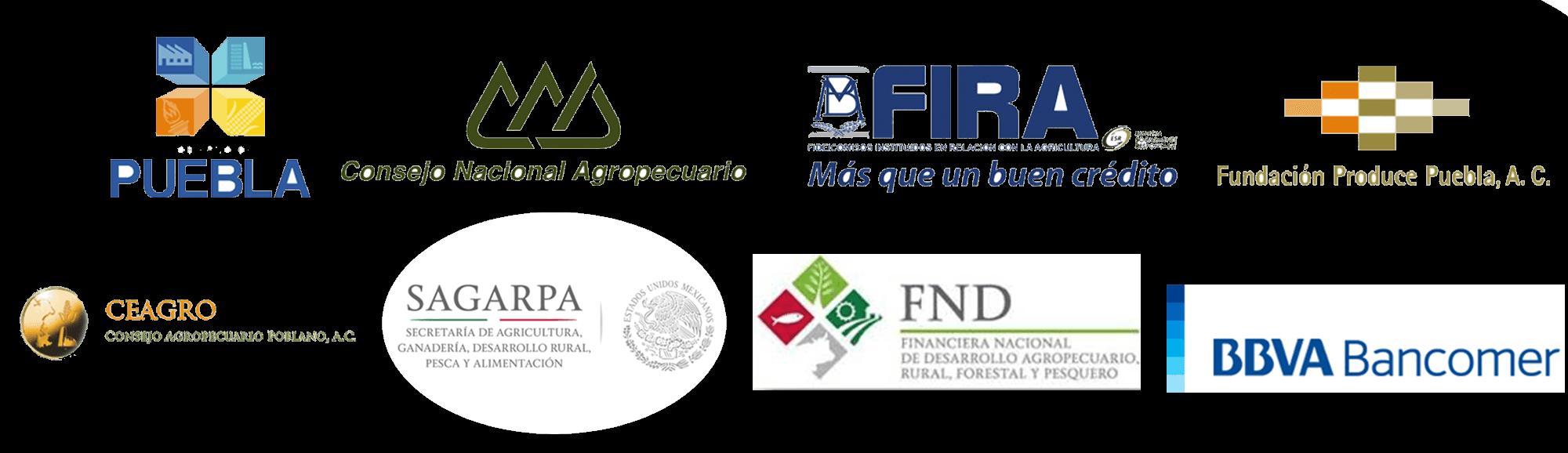 logos de apoyos
